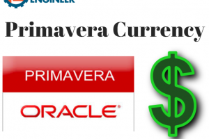 primavera currency 1111