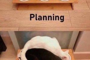 Planning VS Execution